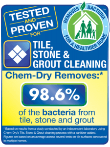 Tile_Stone Study Zachary's Chem-Dry