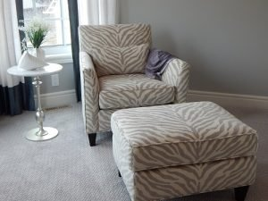 upholstery cleaning orange park
